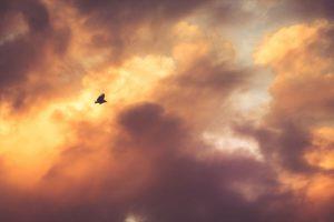 Antara Ada dan Tiada: Tafsir Bintu Syathi