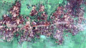 Resmi, Myanmar Disebut Melakukan Genosida Terhadap Rohingya