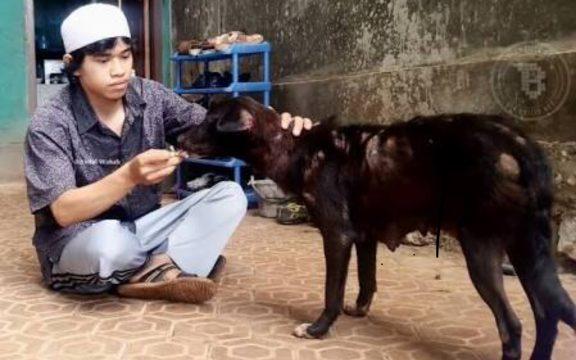 Kisah Perawi yang Lebih Mendahulukan Anjing daripada Imam Mazhab