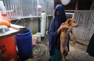 Anjing dalam Pandangan Ulama Fikih