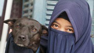 Perempuan Bercadar yang Urus 70 Anjing Diusir, Ustadz Ahong: Kok Jahat Banget Sih?