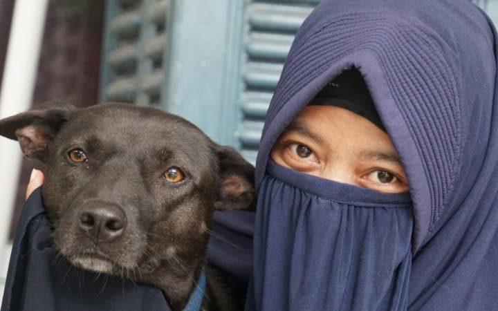 Orang Islam kok Pelihara Anjing?