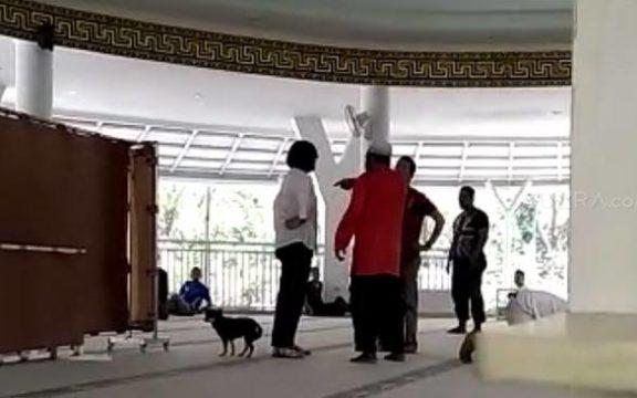 Sikap Seorang Katolik Tentang Wanita Bawa Anjing ke Masjid