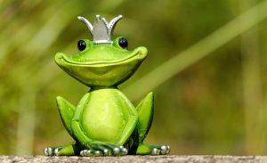 Ketika Nabi Daud Diingatkan Oleh Seekor Katak Agar Tidak 'Ujub