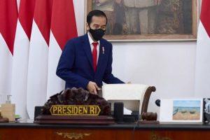 Jokowi Abaikan Muhammadiyah-NU soal Tunda Pilkada saat Covid-19, Siapa Lagi yang Bisa Ngomongin?