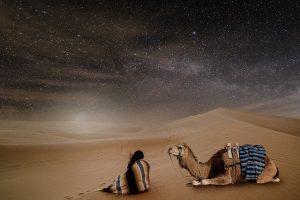 Kisah Nabi Ibrahim dalam Al-Quran: Doa Pamungkas Melepas Kekasih